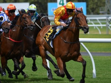 Behind the Melbourne Cup & Horse Racing
